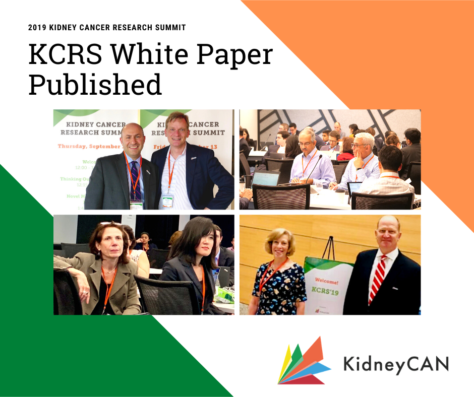 KCRS White Paper Published